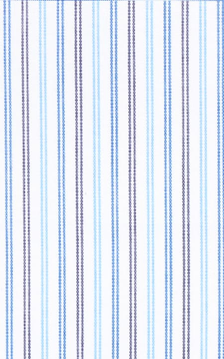 Fabric shot for Blue & Black Pinstripes Shirt