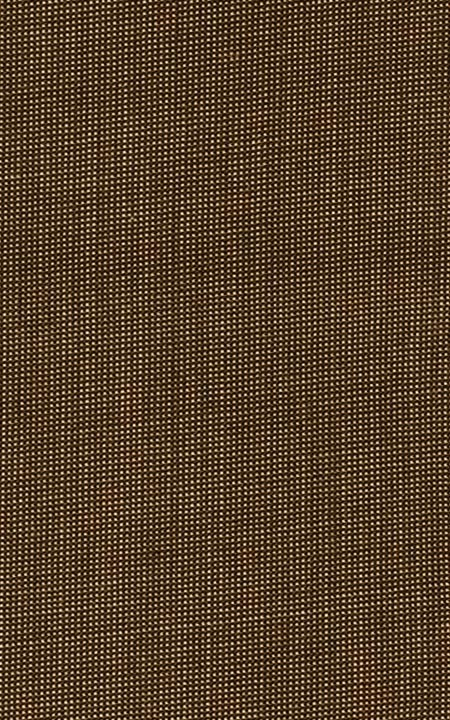 Fabric shot for Nalton Brown Nailhead Suit