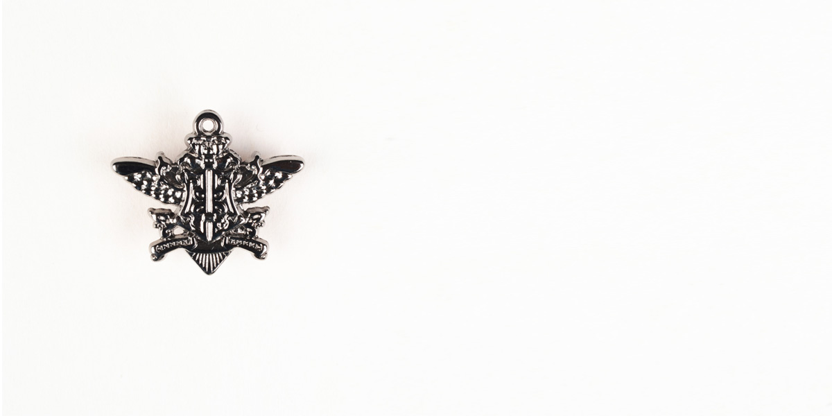 Emblem Silver-Tone Lapel Pin- view-1