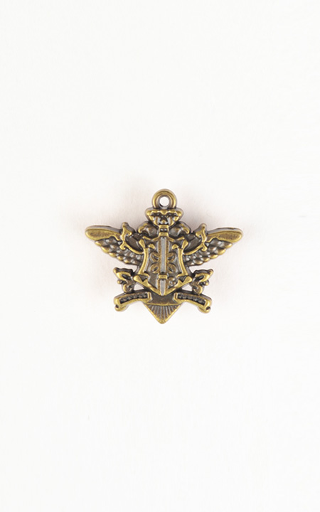 Emblem Brass-Tone Lapel Pin